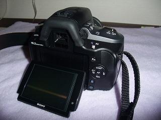 DSCF8013.jpg